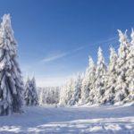 winterlandschaft-eifel